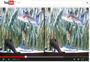 YouTube 3Dアップロード